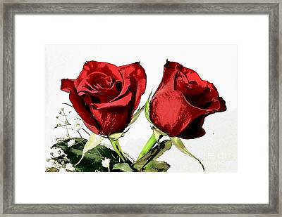 Red Roses 3 Framed Print