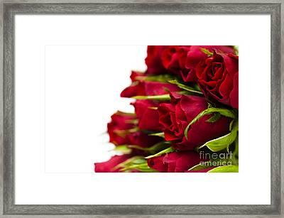 Red Roses Framed Print by Anne Gilbert