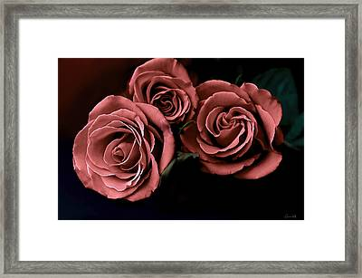 Red Roses Framed Print by Bonnie Willis