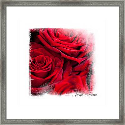Red Roses. Elegant Knickknacks Framed Print