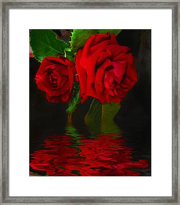 Red Roses Reflected Framed Print by Joyce Dickens