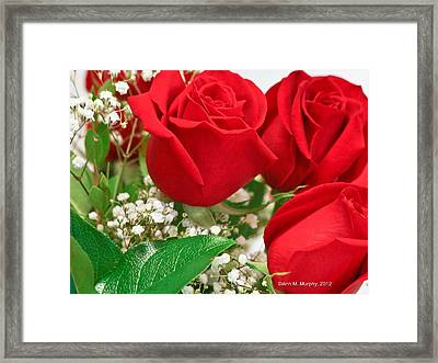Red Roses With Baby's Breath Framed Print