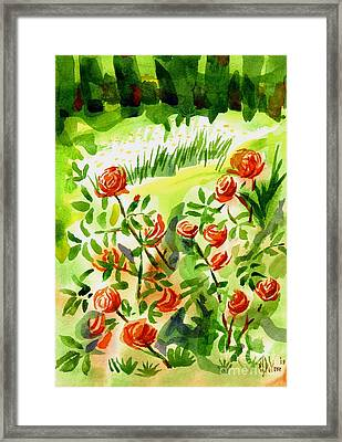 Red Roses With Daisies In The Garden Framed Print by Kip DeVore