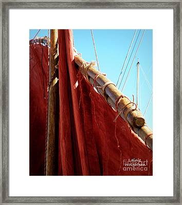 Red Sails Framed Print by Lainie Wrightson