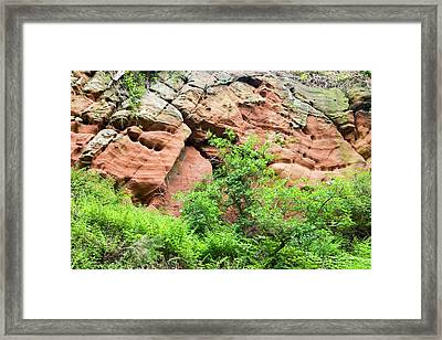 Red Sandstone Bluffs On The River Eden Framed Print by Ashley Cooper