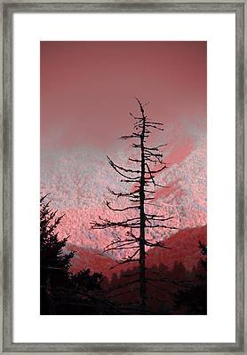 Red Shadows On The Smokies Framed Print by Dan Sproul