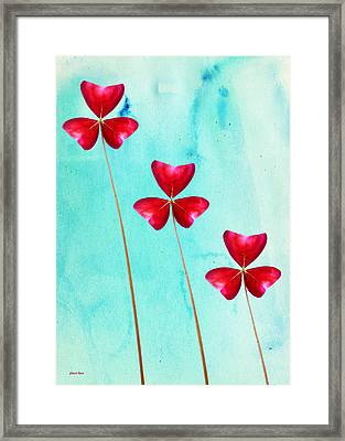 Red Shamrock Trio Framed Print