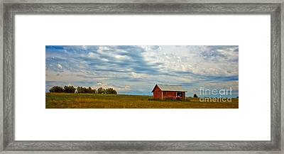 Red Shed Framed Print
