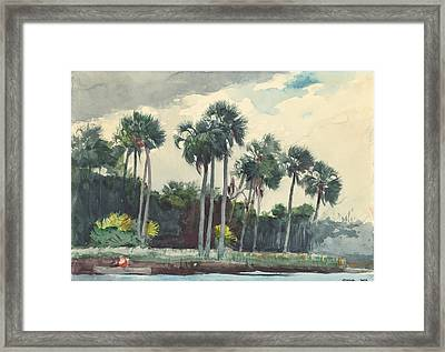 Red Shirt Homosassa Florida  Framed Print by Winslow Homer