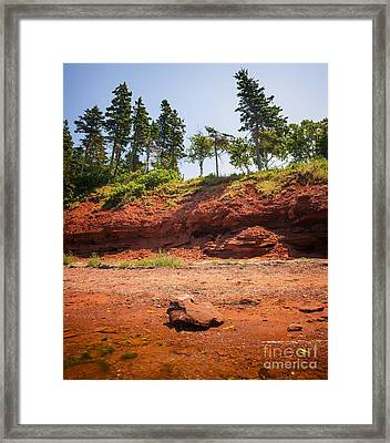Red Shore Of Prince Edward Island Framed Print by Elena Elisseeva