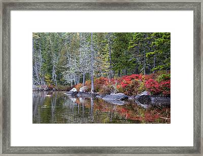 Red Shrubs Line A Lakes Shore Framed Print by Robbie George