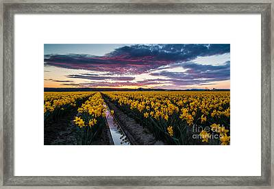 Red Skies In The Valley Framed Print