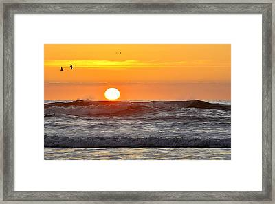 Red Sky At Night Sailors  Delight Framed Print by AJ  Schibig