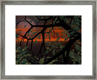 Red Sky Framed Print