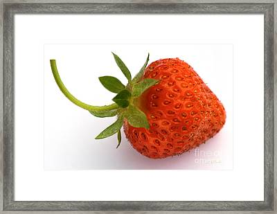 Red Strawberry With Stem Framed Print