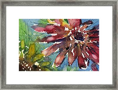 Red Sunflower Framed Print
