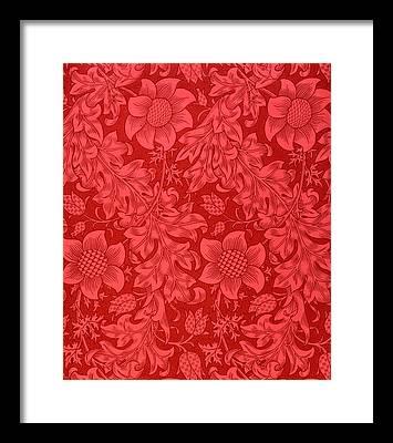 Vines Drawings Framed Prints