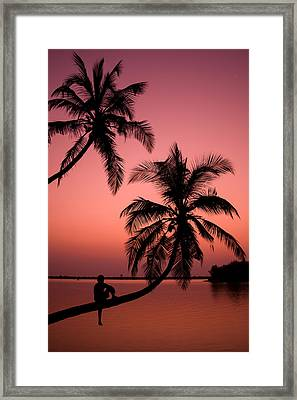 Red Sunset In The Tropics Framed Print