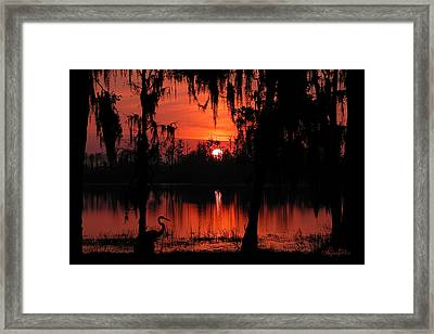 Red Swamp Framed Print