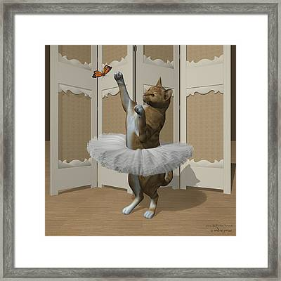 Red Tabby Ballet Cat On Paw-te Framed Print by Andre Price