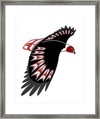 Red Tail Hawk Nw Native  Framed Print by Fred Croydon