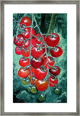 Red Tomatos Framed Print by Huy Lee