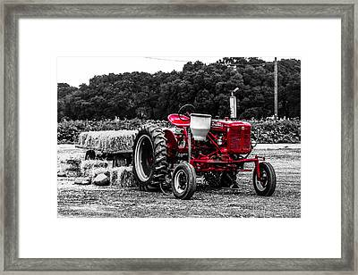Red Tractor Framed Print by Steven  Taylor