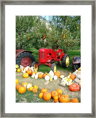 Framed Print featuring the photograph Red Tractor Under The Gourds by Joyce Gebauer