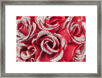 Framed Print featuring the photograph Red Valentines Day Roses by Gunter Nezhoda