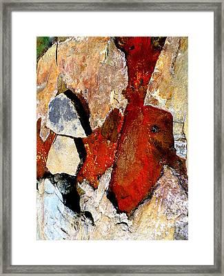 Red Veins Framed Print
