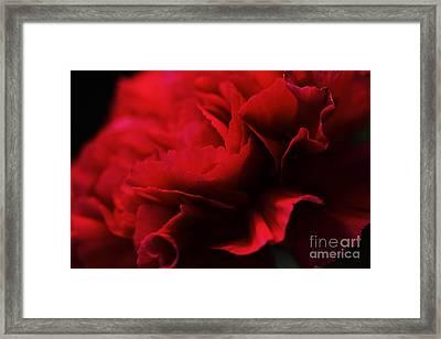Red Velvet Framed Print by Pamela Gail Torres