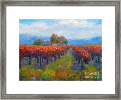 Red Vineyard Framed Print by Carolyn Jarvis
