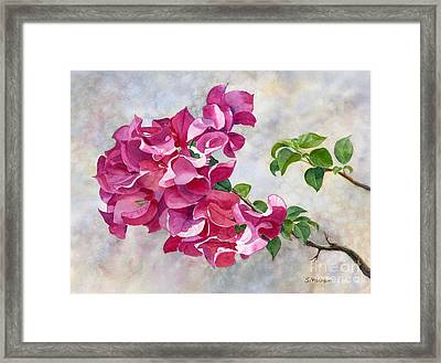 Red Violet Bougainvillea With Textured Background Framed Print by Sharon Freeman
