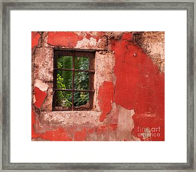 Red Wall Framed Print by Rick Piper Photography
