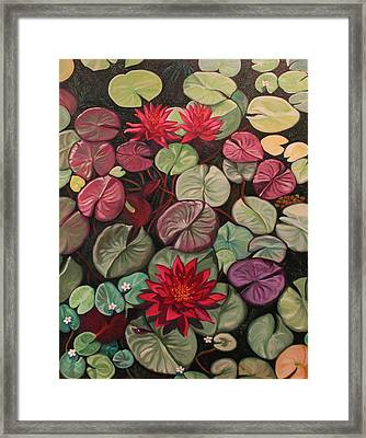 Red Water Lilies Framed Print