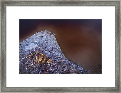 Red Water Framed Print by Ruben Vicente