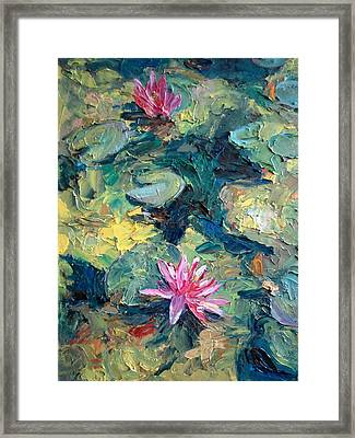 Red Waterlily  Framed Print by Jieming Wang