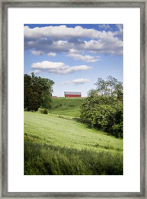 Red White And Blue Framed Print by Heather Applegate
