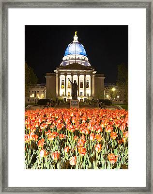 Red White And Blue Framed Print by Steven Ralser