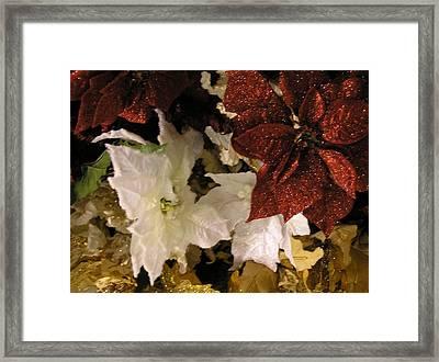Red White Blue Christmas Framed Print