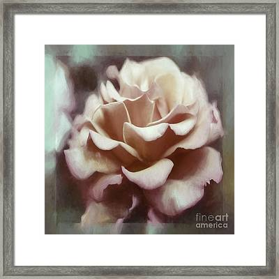 Framed Print featuring the photograph Red White Rose by Jean OKeeffe Macro Abundance Art