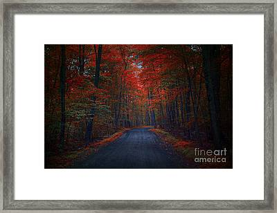 Red Woods Framed Print by Marco Crupi