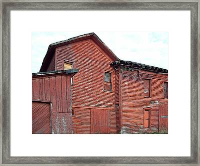 Red Woods Framed Print by MJ Olsen