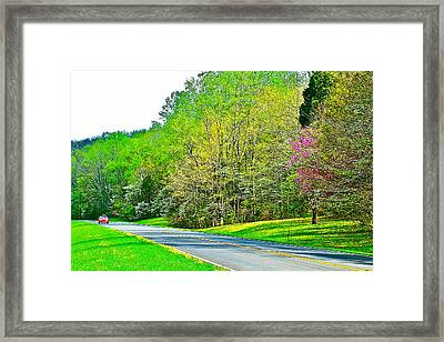 Redbud And Dogwood In Spring At Mile 363 Of Natchez Trace Parkway-tennessee Framed Print by Ruth Hager