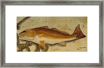 Redfish In The Boat Framed Print
