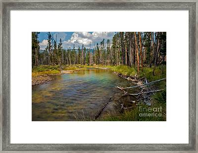 Redfish Lake Creek Framed Print