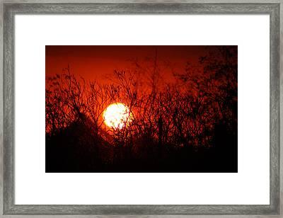 Redorange Sunset Framed Print by Matt Harang