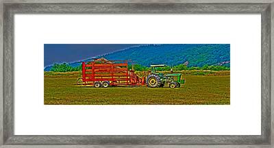 Redwood Ca Framed Print