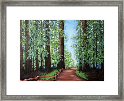 Redwood Forest Path Framed Print by Penny Birch-Williams