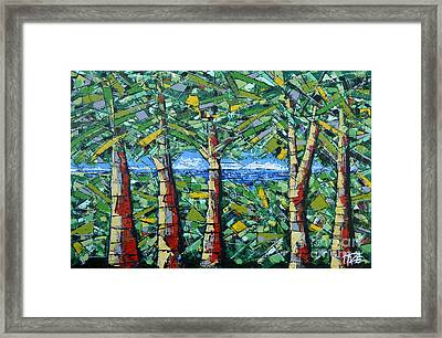 Redwood Framed Print